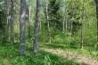 Narva-Jõesuu kuursaali park, 19. saj. Tume park, vaade edelast Aia tn. ja Supeluse tn. ristmikult. Foto: Kalle Merilai 15.05.2018. a.