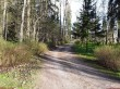 Muuga mõisa park. Foto: Raili Uustalu 08.05.2018. Vaade Pargi teele väravaehitise suunas.