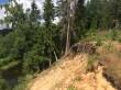 Vaade kääpa reg-nr 13489 endisele asukohale lõunast. Kääbas asus õhus seisvate puujuurte koha peal ja on erosiooni tõttu ilmselt hävinud. Foto A. Kivirüüt, 03.07.2018.