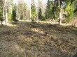 Hellamaa kalmistu pärast metsloomade poolt üles tõngumist. Foto: Keidi Saks, 12.04.2018