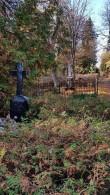 Tõrma kalmistu. Foto: M.Abel, kp 17.10.18