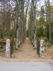 Vana värava koht    Autor Tarvi Sits    Kuupäev  09.11.2004