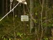 Vana tähis. Foto: Tarvi Sits, 22.10.2004.