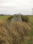 Vaade kivile reg-nr 10884 põhja poolt. Näha tuulikuid Tallinn-Narva maantee servas. Uus tähis on kivist põhja pool taimede sees peidus (must tipp näha). Foto 12.11.2018, A. Lillak.