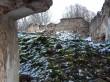 Udriku mõisa viinavabriku varemed. Foto: Raili Uustalu 07.12.2018. Vaade varemete sisemusse. Kiviklibu - ja lasu on sammaldunud.