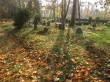 Lümanda kalmistu vaade põhjapoolselt kalmistusiseselt teelt. Foto: Keidi Saks, 17.10.2018