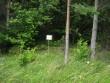 Kivikalme paikneb vahetult Kihelkonna-Mustjala kõrvalmaantee ääres. Foto: M. Koppel, 20.07.2009.