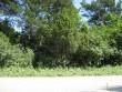 Vaade külavaheteelt räpikusse kasvanud kivikalmest. Foto: M. Koppel, juuli 2009.