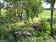 Audla kultusekivi. Foto: M. Koppel, 2009.