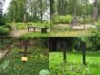 Väike-Maarja kalmistu, reg. nr 5819. Vaateid kalmistule. Foto: M.Abel, kuupäev 08.09.2009