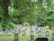 I maailmasõjas ja Vabadussõjas langenute matmispaik, reg. nr 5780. Vaade matmispaigale idast. Foto: M.Abel, kuupäev 18.09.2009
