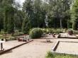 Tudu kalmistu. Foto: Raili Uustalu 15.08.2019. Hauaplatside kujundused tulevad esile kalmistu üldpildis. Olukord peale isetekkeliste puude raiet.