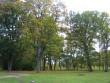 Veltsi mõisa park reg. nr. 15768, vaade loodest, peahoone eest. pilt Anne Kaldam 29.09.2009