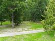 Taagepera mõisa park ja alleed. Foto: Raili Uustalu 08.08.2019. Vaade terrassilt parki.
