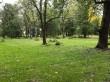 Viimsi mõisa park. Foto: Raili Uustalu 02.10 2019. Kinnikasvanud kraavid pargi edelapoolses osas.