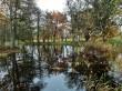Uuemõisa mõisa park. Foto: Raili Uustalu 18.10.2019. Vaade sillalt tiigi veepeegeldusele.