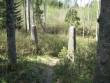 08.05.2009 Väravapostid kalmistu N-küljel