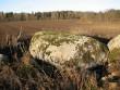 Lohukivi asub 10 m läbimõõduga ja 2,5 m sügavuse karstilehtri lõuna-kaguservas. Kivil leidub 43 korrapärast lohku. Foto: M. Abel, 02.11.2009.