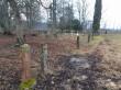 Järva-Madise kalmistu piirdeaia postid kalmistu loodepiiril. Foto: K. Klandorf 15.01.2020.