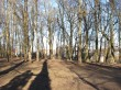 Pargi 2a Karlova pargi vaade lagendikult alleele. Foto Egle Tamm, 04.02.2020.