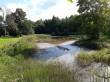 Muuga mõisa park. Foto: Raili Uustalu 15.08.2019. Vaade veekogule pargisillalt.