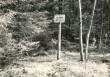 Kivikalme reg nr 12409 (662) - edelast. Foto: E. Väljal, 05.05.1983. (Muinsuskaitseameti arhiiv).