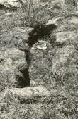 Kivikalme reg nr 12422 (73-k) - põhjast. Foto: E. Väljal, 11.05.1982. (Muinsuskaitseameti arhiiv).
