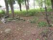 Tapa vana kalmistu, reg. nr 5788. Foto: I. Raudvassar, kuupäev 20.09.2006