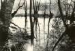 Ohvriallikas reg nr 12542 (716) - loodest. Foto: E. Väljal, 16.05.1980ndad aastad.