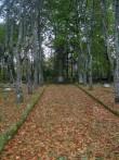 Tuletõrjujate hauasammas. K. Lüüs. 1935 (graniit). Sirje Simson 08.10.2007