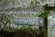 Perekond Aule hauasammas. H. Halliste, 1938 (graniit). Detailvaade (signatuur) Foto: Sirje Simson 06.09.2007