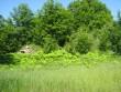 Keldrite üldvaade lõunast. M.Koppel 2009