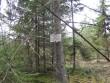 Tähis on maast välja tulnud ja asub teisel pool teed puu najal.