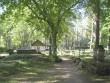 Silla kalmistu. Autor: M.Koppel Kuupäev: 2009