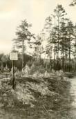 """Pelgupaik """"Seljamägi"""" 10658. Foto: H. Joonuks, 1971."""
