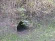 Uue-Suislepa mõisa park Koobas liivakivis Foto Anne Kivi  03.05.2010
