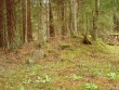 Muistsed põllud. Foto: M. Koppel, 2009.