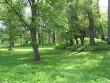 Varangu mõisa park, vaaade läänest peahoone ja valitsejamaja vahelt. aeg: 19.05.2010 autor: Anne Kaldam