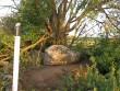 Kultusekivi reg nr 10833, vaade loodest, kultusekivi on väikese kivi all olev suur rändrahn. Foto: E. Ehrenpreis, juuli 2006.