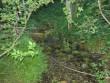 """Ohvriallikas """"Silmaallikas"""", """"Paranduseveeallikas"""" reg nr 10844. Foto: E. Ehrenpreis, juuli 2006."""