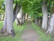 regulaarpark peahoone taga Foto Riina Pau 31.05.2010