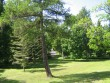 Vihula mõisa park, 15953. vaade peahoone tagumiselt rõdult    aeg: 10.06.2010 autor: Anne Kaldam