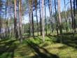 Vaade kääpale. Tagaplaanil Valga-Petseri raudtee. Foto: Viktor Lõhmus, 17.06.2010.