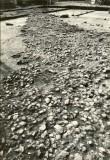 Asulakoht - kirdest. Foto: E. Väljal, 09.08.1984.
