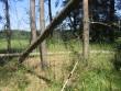 Vaade kääpale ja taamal põllule. Puud on murdunud põlengu tagajärjel. Foto: Viktor Lõhmus, 05.07.2010.
