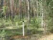 Kääbaskalmistu 24 kääbast sai tähise. Teksti pole näha. Foto: Viktor Lõhmus, 06.08.2010.
