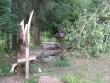 Väike-Maarja kalmistu, reg. nr 5818. Vaateid tormikahjustustele. Foto: Ingmar Noorlaid, kuupäev 09.08.2010