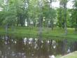 Ülemine tiik ja aiaosa  Riina Pau 07.06.2005