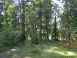 Kiltsi mõisa park,vaade   Autor A.Kaldam  Kuupäev  01.09.2010