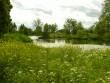 Kiltsi mõisa park,  Autor A.Kaldam  Kuupäev  27.06.2008